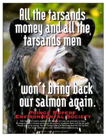 Bear-Salmon poster