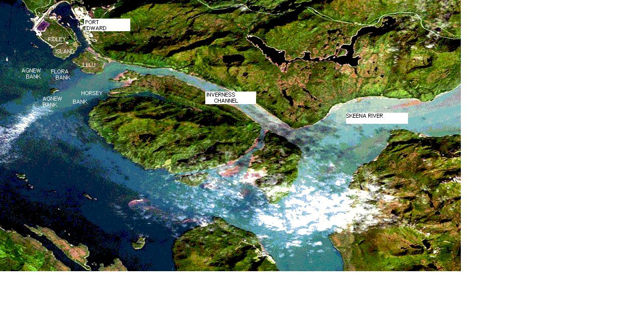 88 % of Skeena salmon turn right down Inverness and onto Flora Bank- critical salmon habitat.