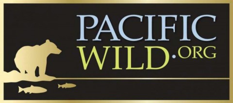 Pacific_Wild_Initiative_Project_DF_-_Fillable_with_Logo_CMYK_Desktop_Resolution362113907_std.164134448_std